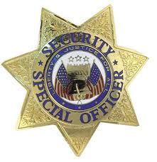 badge for PPO license examination